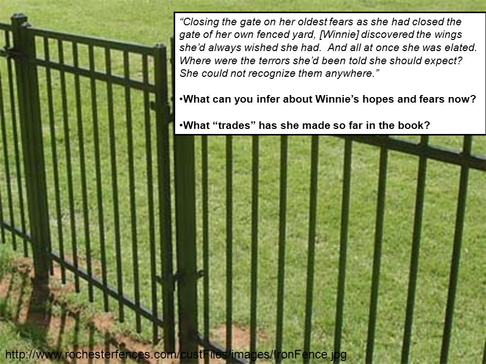 Closing the gate on her oldest fears as she had closed the gate of her own fenced yard, [Winnie] discovered the wings she'd always wished she had. And all at once she was elated. Where were the terrors she'd been told she should expect She could not recognize them anywhere.